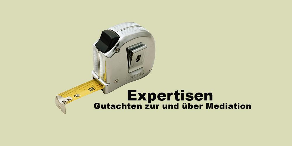 portfolio-expertisen-1