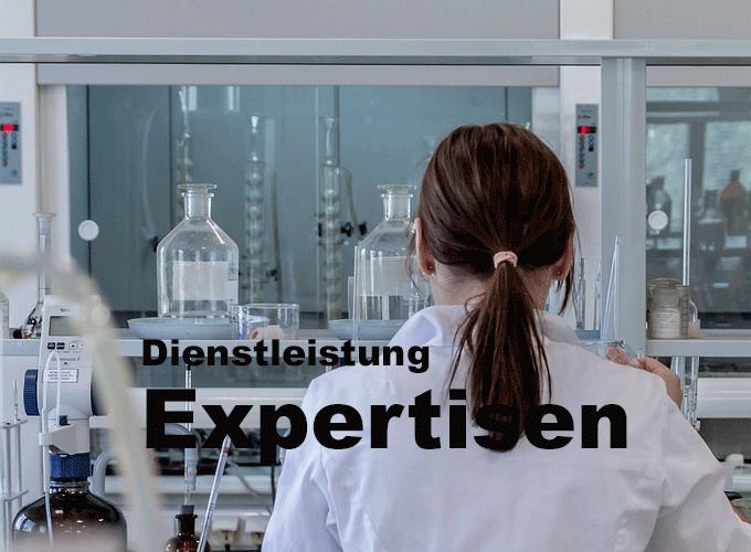 Expertisen